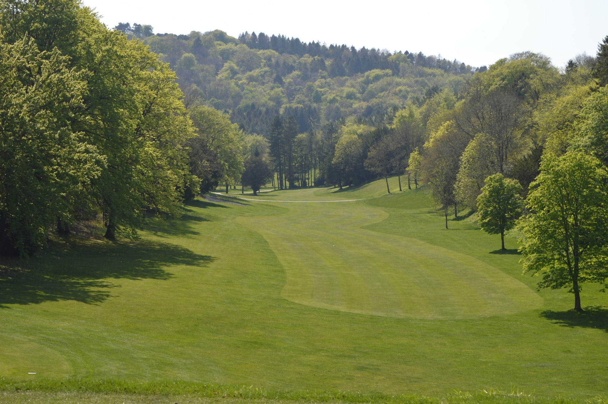 Chiltern Forest Golf Course - The Course 1
